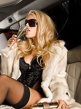 Sexy Secretaries, Anette Dawn, Naked in Limo
